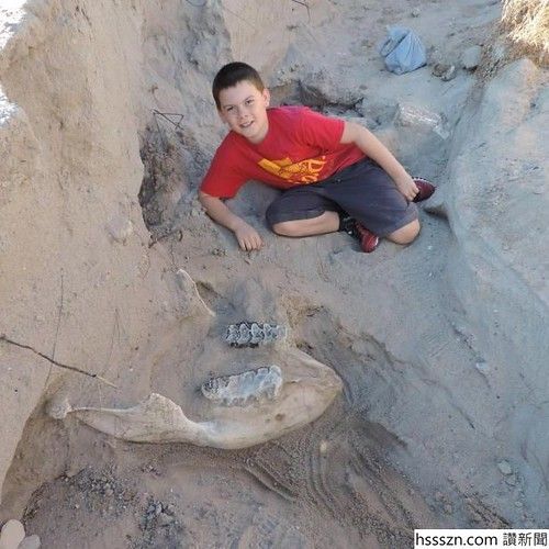 jude-sparks-10-said-he-literally-fell-on-this-1-2-million-year-old-stegomastodon-skull-on-the-outski_649799__616_616