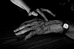 Hands # 6