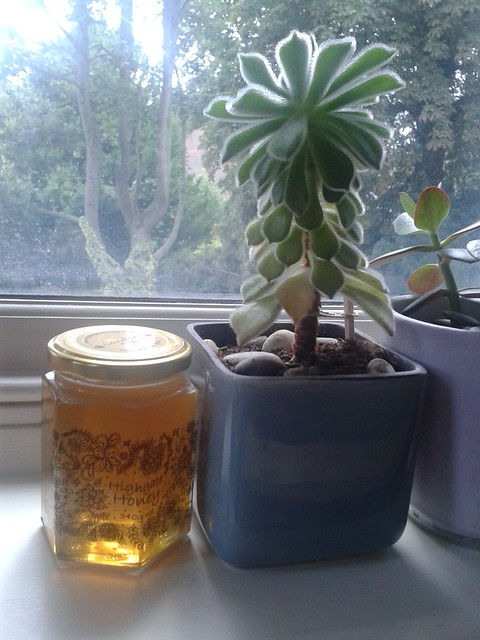 Highgate Honey