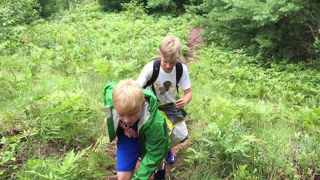 Hike on Fireline Trail