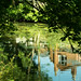 20170717-02_Reflections - River Leam - Royal Leamington Spa