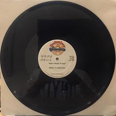 SASHAY:CHANGES(RECORD SIDE-B)