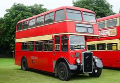 Alton Bus Rally 2017.
