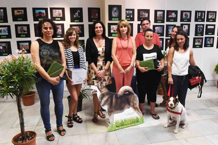 JUVENTUD EXPOSICION FOTOS PROTECTORA DE ANIMALES2