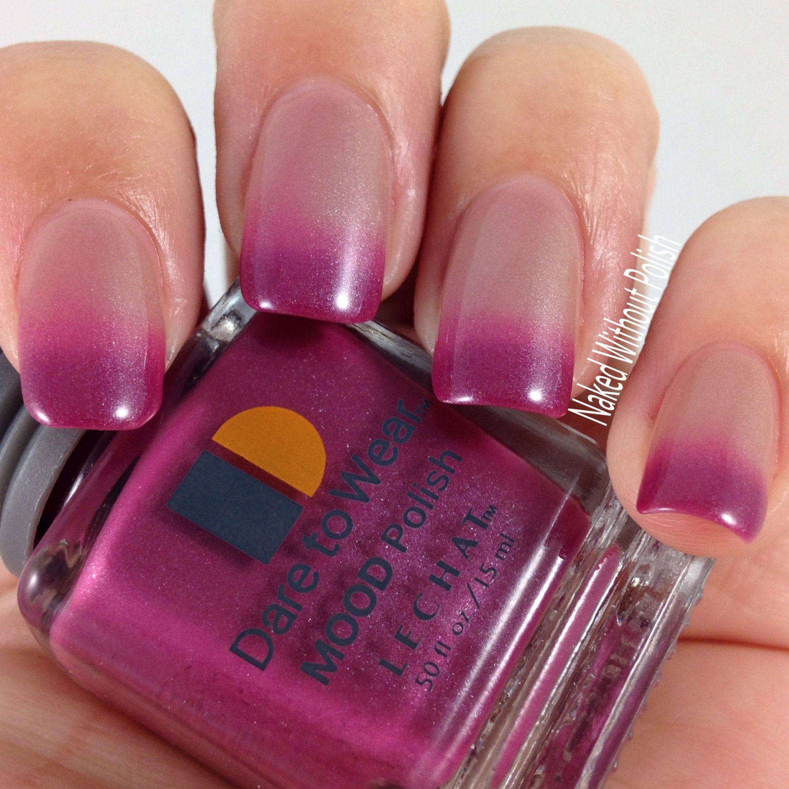 Le-Chat-Nails-Cherry-Blossom-4