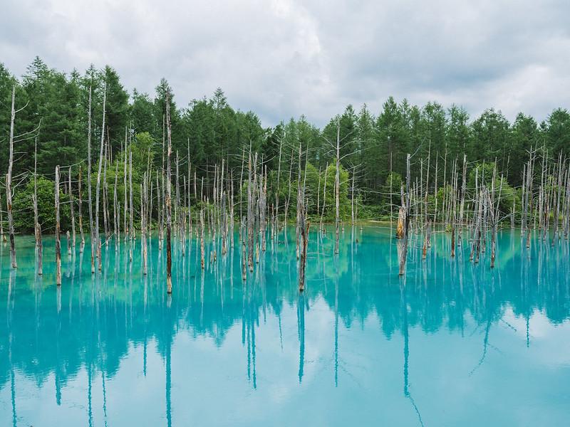 The Blue Pond, Biei