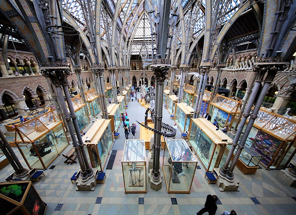 Oxford University Museum of Natural History. Credit Geni