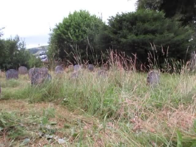Mowing burial ground July 2017