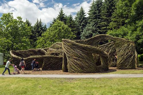 Monumental Dougherty, Jardin botanique de Montréal