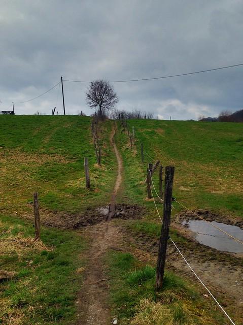 WF11: Deilbachtal - Dunkerweg - Hackenberg