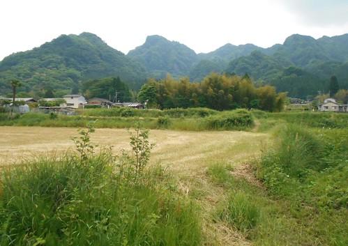 jp-takamori (5)