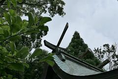 Photo:Roof of main sanctuary (本殿) at Niikawa Shrine (新川神社) By Greg Peterson in Japan
