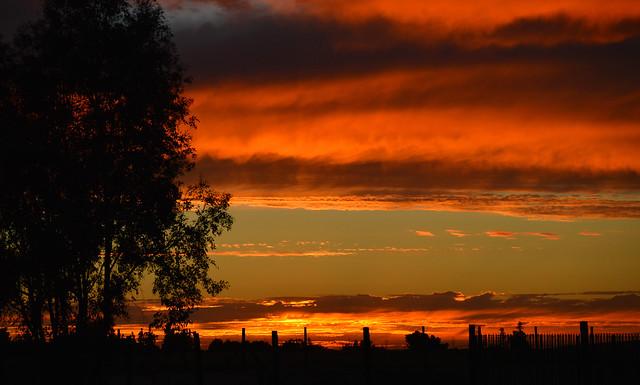 Central Valley, California., Nikon D3200, AF-S DX Zoom-Nikkor 55-200mm f/4-5.6G ED