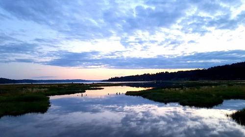 thelerwetlands wetland hoodcanal belfair galaxys6 olympicpeninsula kitsappeninsula sunset cloudsstormssunsetssunrises