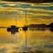 Menai moorings by jvarley19