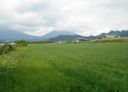 jp-takamori (3)