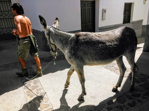 Paseando por Gualchos Granada