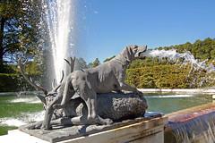 Chiemsee - Herrenchiemsee (28) - Schlosspark