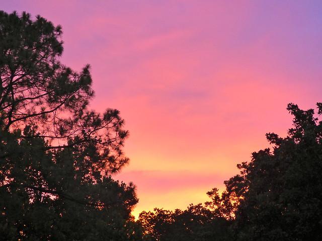 June Sunset, Panasonic DMC-FZ70