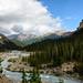Bow River by tylerhuestis