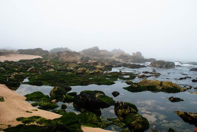2017 07 - Oporto Beach-8.jpg