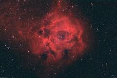 The Rossete Nebula - NGC2244