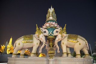 Bangkok Elephants IV