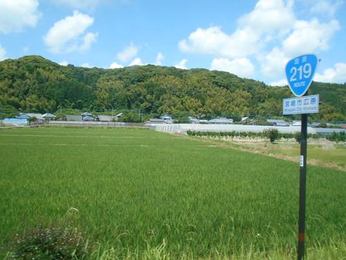 jp-Aoshima-Saitobaru (6)