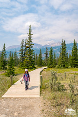 Hiking the Siffleur Benches Trail