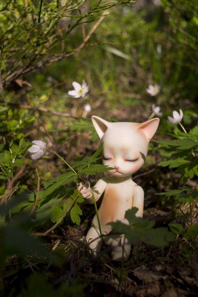 170526 Kitty 01