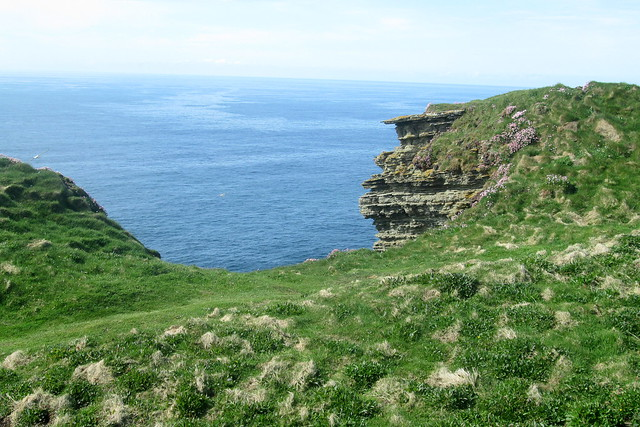 Cliff and Sea at Marwick Head, Orkney