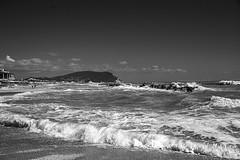 ........e il naufragar m'è dolce in questo mare