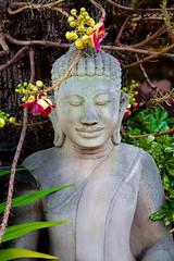 A DI DA PHAT QUAN THE AM BO TAT DAI THE CHI BO TAT GUANYIN KWANYIN BUDDHA 9498