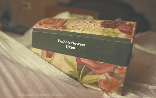 Pinhole Flowers