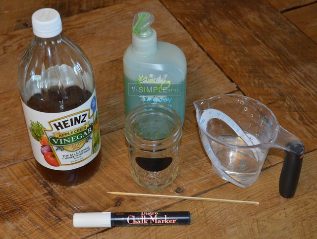 easy DIY Fruit Fly Tap on The SIMPLE Moms