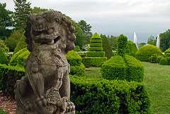 topiary guardian