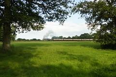 Steam in Sussex