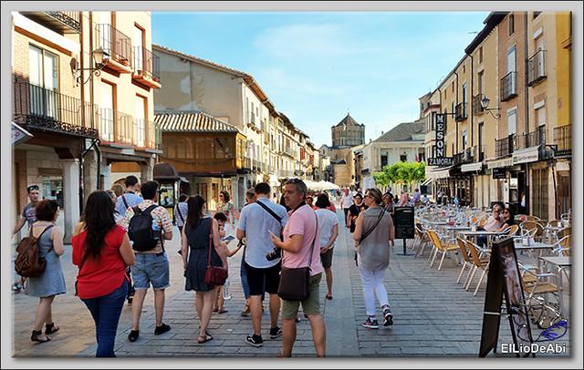 Museo del Vino Pagos del Rey y visita a Toro (26)
