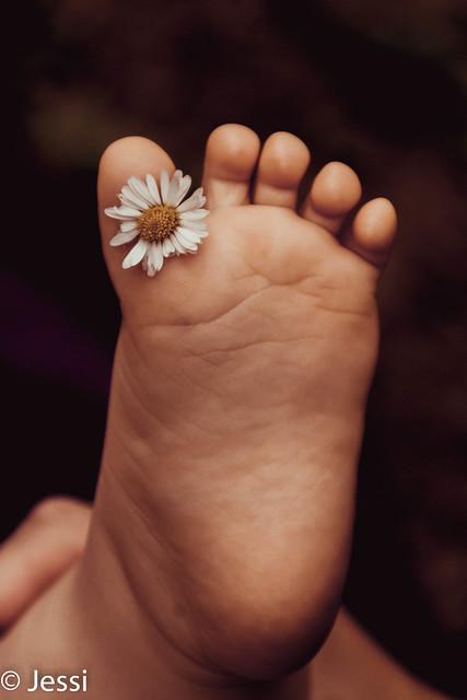 daisy foot