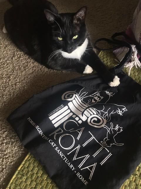 Frankie with bag
