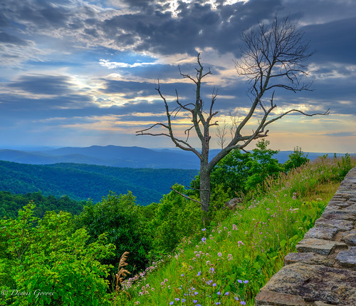 shenandoah virginia clouds landscape landscapemountain sky skylinedrive summer tree