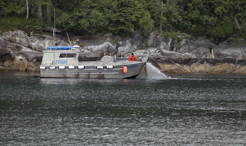Prince William Sound glacier cruise Alaska -