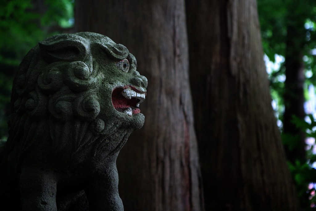 A Lion Guardian At Suginami Shrine, Lake Towada