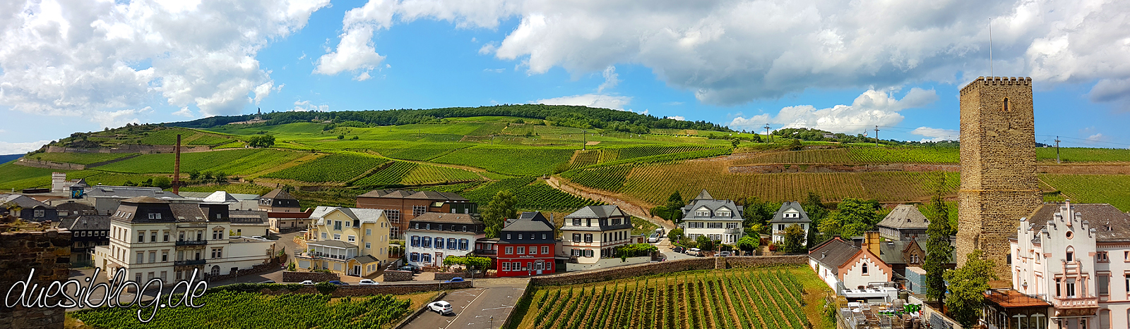 Ruedesheim Panorama Rheingau Travelblog duesiblog 001