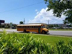 21510 - 2015 Blue Bird Vision Propane - Pinellas County School Bus