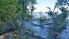 La Plage Nudiste Inond� Par Le Lac Des Deux-Montagnes. 2017 07 05 16:17.08