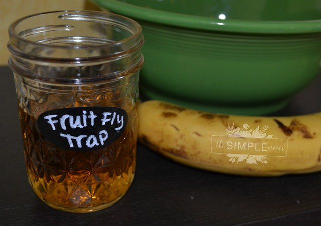keep this Easy DIY Fruit Fly Trap from The SIMPLE Moms next to fruit and veggies