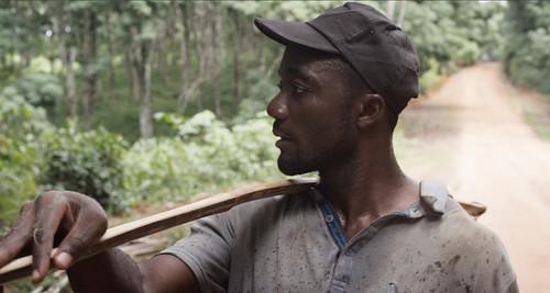 映画『リベリアの白い血』