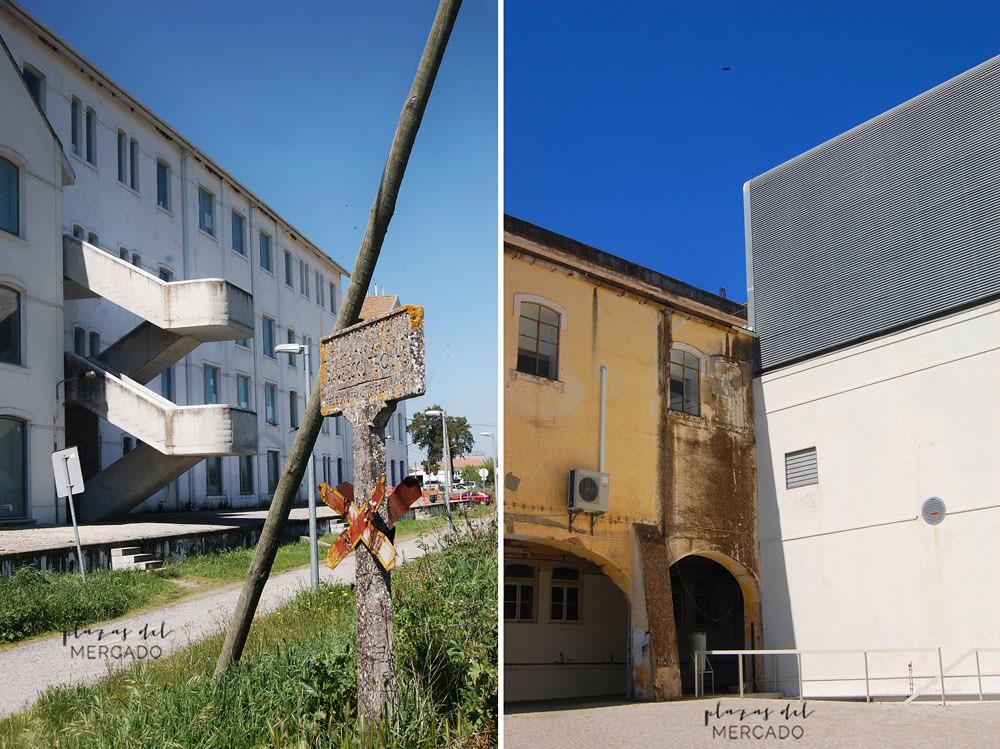 Leões. Escuela de Arquitectura_ ecopista_biblioteca y su acceso. Sheila Palomares Alarcón. Abril 2017