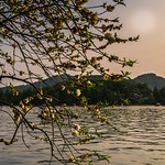 Sat, 04/15/2017 - 18:03 - Leifeng Pagoda is a hot attraction at West Lake of Hangzhou.  I captured this image at the beautiful sunset moment with the Lyifeng Pagoda as an alndmark in distance.  This is also one of the most famous one of 'Ten Scenes of West Lake', 'Leifeng Pagoda in the Sunset' 【雷峰夕照.】